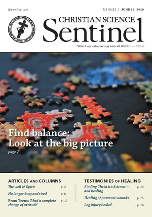 Sentinel issue cover
