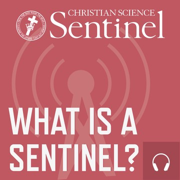 What is a Sentinel?